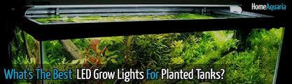 Led Aquarium Lighting What U0027s The Best Led Grow Lights For Aquarium Plants Home Aquaria