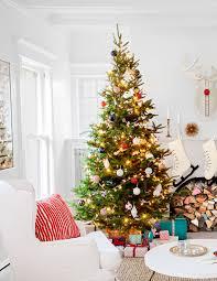 100 silvertip christmas tree best 20 noble fir tree ideas