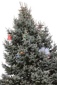 knightstown cross back on christmas tree after weeks of