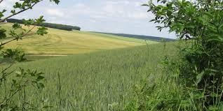 chambre d agriculture des ardennes produire ardennais relancera l économie des ardennes wikiagri fr