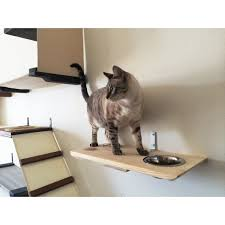 Wall Shelves For Cats Catastrophicreations Wall Mounted Cat Feeder