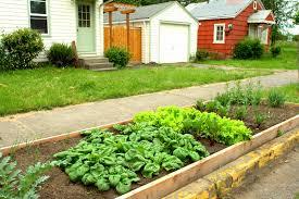 Urban Vegetable Garden by Preventing Garden Vandalism U2013 Protecting Gardens Along Sidewalk