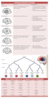 sheet types type location basic characteristics of aphasia cheat sheet