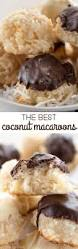 coconut macaroons recipe macaroon recipes macaroons and bakeries
