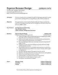 Best Ceo Resumes by Writer Resume Example Professional Written Resume Examples Media