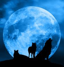 Pink Moon Pink Moon And Partial Eclipse Werewolf Warning Paranormal
