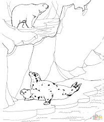 polar bear hunting for ringed seals coloring page free printable