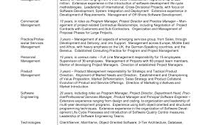 Sample Senior Software Engineer Resume Resume Wonderful Resume Programs Wwwisabellelancrayus Foxy