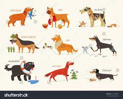 boxer dog breeders near me dog breeds cocker spaniel collie newfoundland stock vector