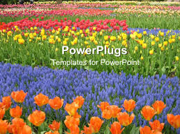 A Garden Of Flowers by Powerpoint Template 5 Kids Playing Happily In A Garden Full Of