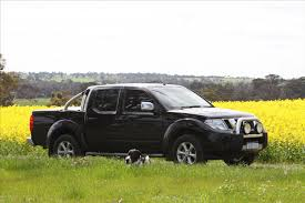 nissan navara stx d 40 general discussion forums page 1