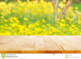 wood table top blur flower garden background stock photos images
