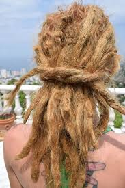 stages of dreadlocks pictures you gotta dread your heart before your dread your head lily s