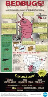 Bed Bug Exterminator Detroit Pest Control Bed Bugs Louisville Ky Ktactical Decoration