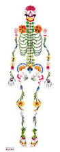 Halloween Posable Skeleton A Halloween Treat By Human Skeleton Creative Director And Skeletons