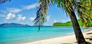 caribbean cruises cruise line
