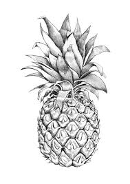images for u003e pineapple graphic design pineapples pinterest