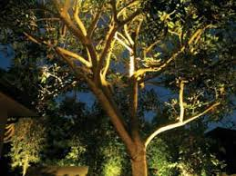 Landscape Tree Lights Serenity Landscape Lighting Outdoor Services Ballwin Mo