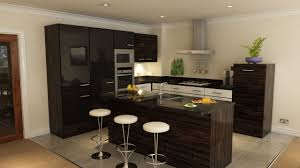Fancy Kitchen Designs Apartment Fancy Dark Brown Apartment Kitchen Design With Round