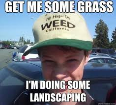 Landscaping Memes - awesome its 4 20 family fued is on almost on stoner luke quickmeme
