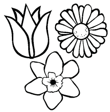 spring flowers coloring pages printable flower for adults and
