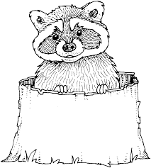 whistling raccoon coloring pages gallery art chester raccoon