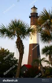 tybee island lighthouse through palm trees stock photo 33667531