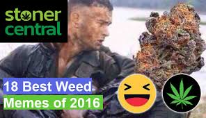 Best Weed Memes - 18 best weed memes of 2017 weed daily cannabis news