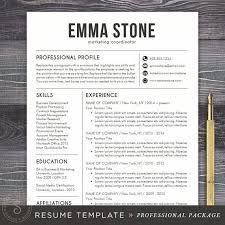 professional resumes professional resume ideas resumes 18 trendy
