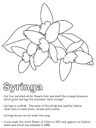 geography coloring pages coloring home