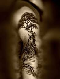 tree of by amduhan deviantart com on deviantart a