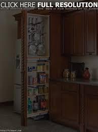 kitchen new corner storage cabinet for kitchen popular home