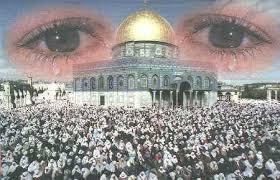 صور رائعة عن مدينة القدس.. أدخل ولن تندم Images?q=tbn:ANd9GcTJ9okRd7hw4RQ7QQjPtI_mcskzlKzwT7xIpeT1ctGTOdD_BpDB