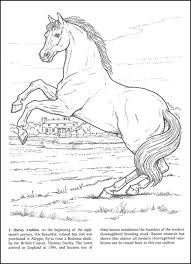 Detailed Coloring Pages Realistic Horse Coloring Pages Getcoloringpages Com by Detailed Coloring Pages