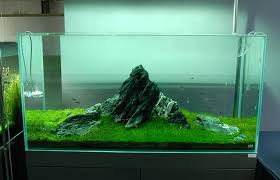 Aquascape Design Layout Aquascape Design Layout Aquascape Designs For Your Aquarium