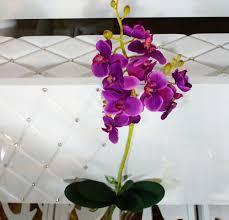 Free Shipping Flowers Aliexpress Com Buy Free Shipping 2pcs Pack Orchid Flower Home