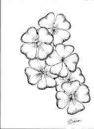 clover drawings leaf clover lesson this free drawing