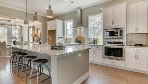 Dr Horton Home Floor Plans Homes In Mount Pleasant Sc For Sale D R Horton
