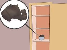 how to get rid of musty smell in furniture expert advice on how to get smoke smell out of your house