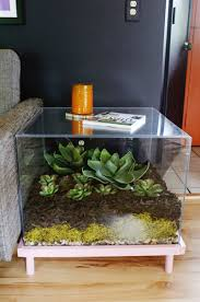 Fish Tank Living Room Table - terrarium side table diy u2013 a beautiful mess