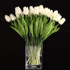 compare prices on tulips flower online shopping buy low price