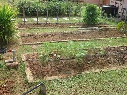 100 home vegetable garden design ideas vegetable garden