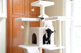 cat furniture armarkat 77 inch cat tree ivory chewy com