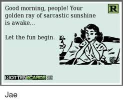Morning People Meme - good morning people your r golden ray of sarcastic sunshine is