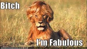 I Am Fabulous Meme - image 261794 bitch i m fabulous know your meme