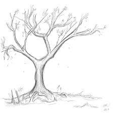 tree symbolism speak tree symbolism the tell tale tribune