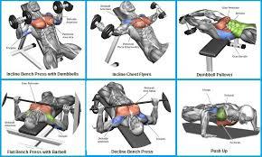 decline bench press muscles top 6 exercises to build chest muscles juan pinterest chest