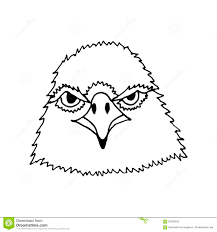illustration of eagle face in sketch style vector stock vector