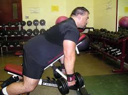 Dumbbell Exercises On Bench Exercise Of The Week One Arm Dumbbell Rows