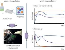 raman spectroscopy as a tool for ecology and evolution journal